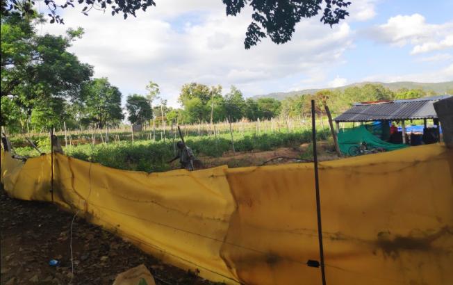 Solar Fencing